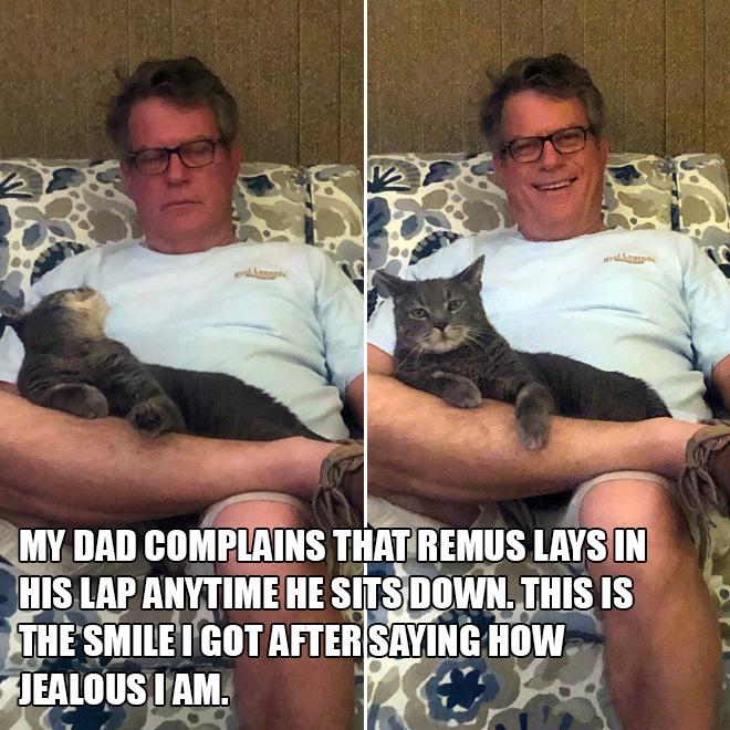 Mi papá se queja de que Remus se acuesta en su regazo cada vez que se sienta. Esta es la sonrisa que obtuve después de decir lo celosa que estoy.