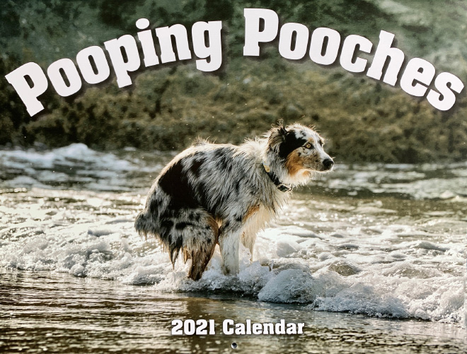 ¡El calendario Pooping Pooches 2021 finalmente ha llegado!