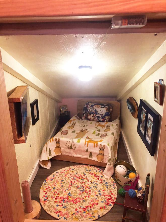 Acogedora habitación para gatos.
