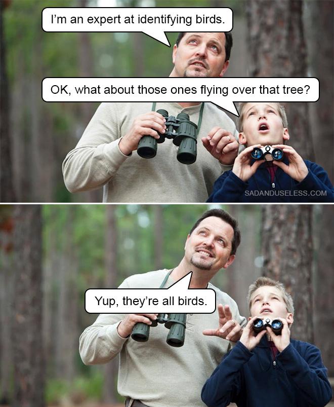 Observación de aves con papá.